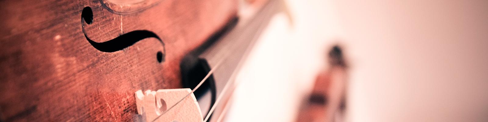 violin-338518